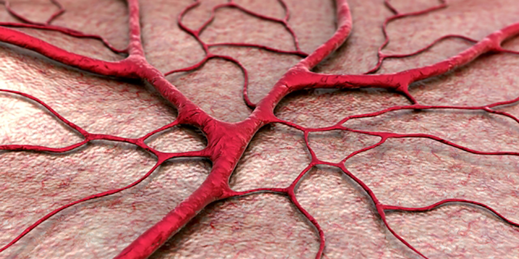Vascularization using bioactive glass